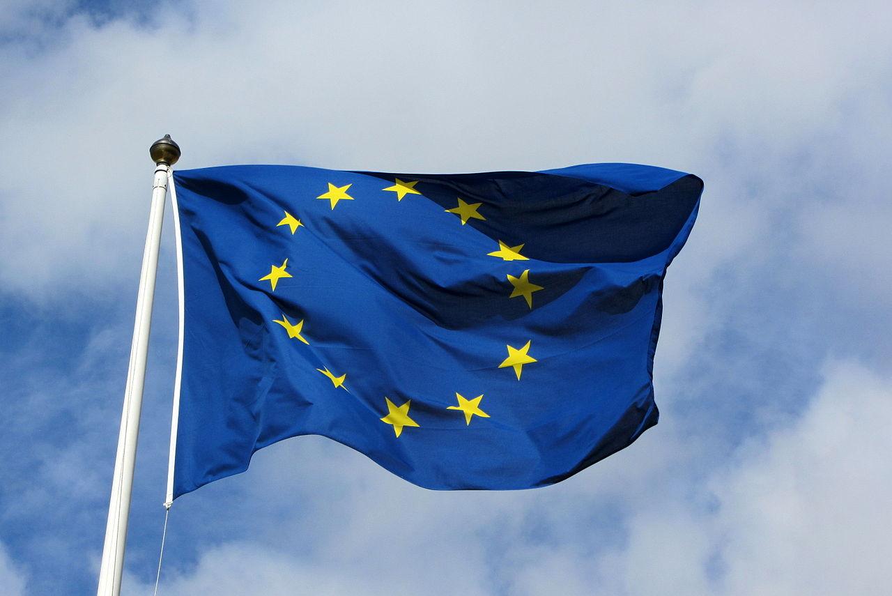 Les élections européennes pour les « nuls »